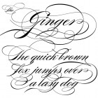 Burgues Script