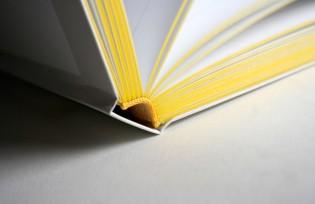 """Explorations in Typography"" binding"