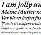 Antwerp Medium Italic