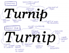 Turnip and Turnip RE compared, with notes from the designer