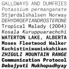 Atlas Typewriter font family