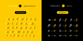 Braxton alternates and ligatures