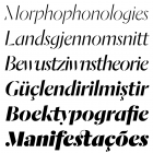 Dala Moa Italics (6 of the 8 weights)