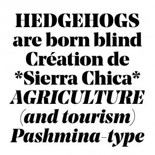 Noe Display fonts specimen