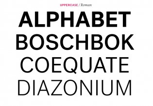 Post Grotesk caps