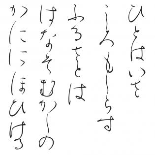 Kozei Main