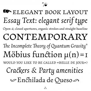 Essay Text specimen