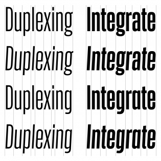 Action's duplexing not only applies to the romans and italics, but also all of its alternate glyphs.