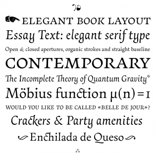 Serif  Typographica Essay Text