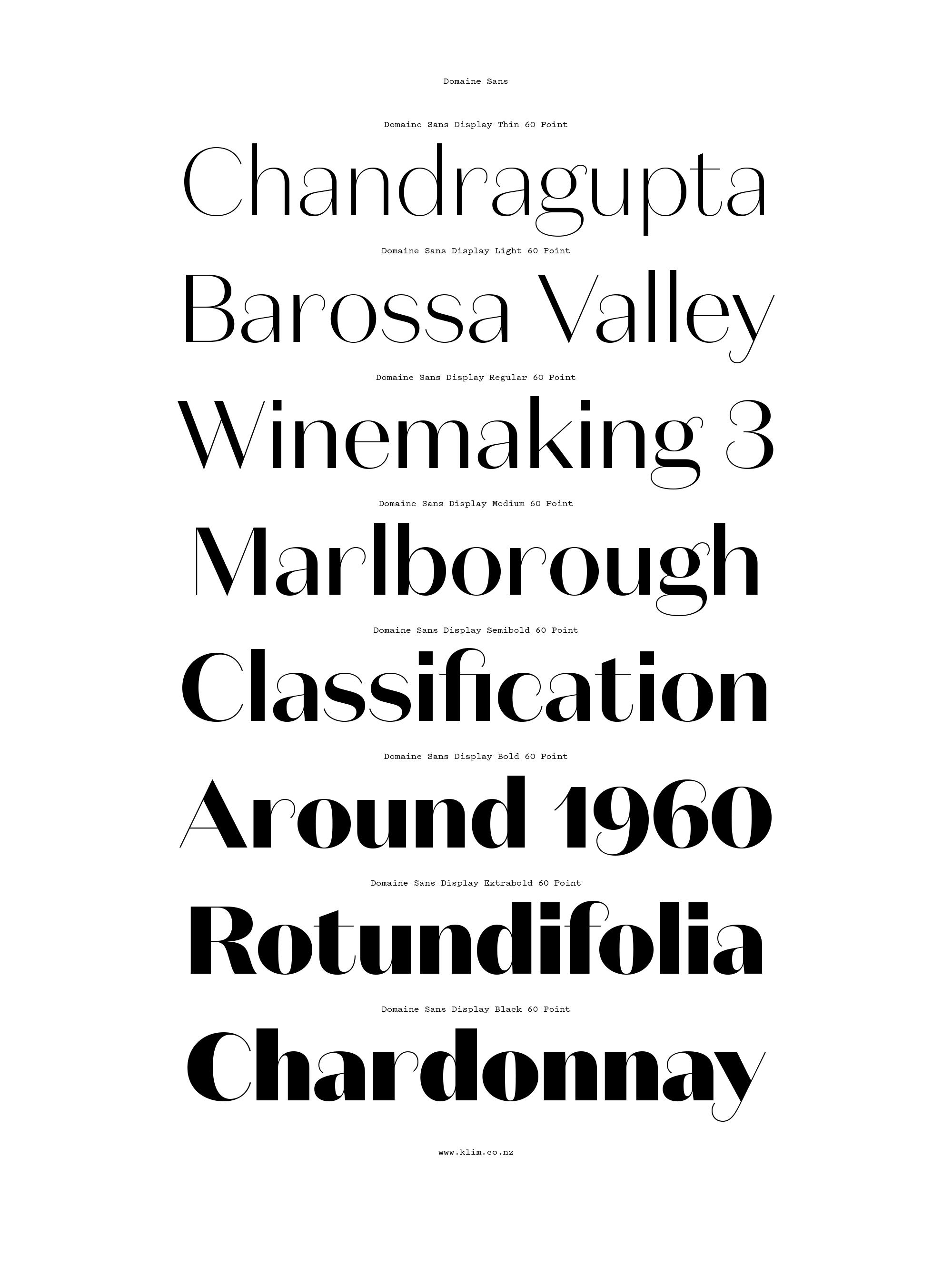 Domaine Sans – Typographica