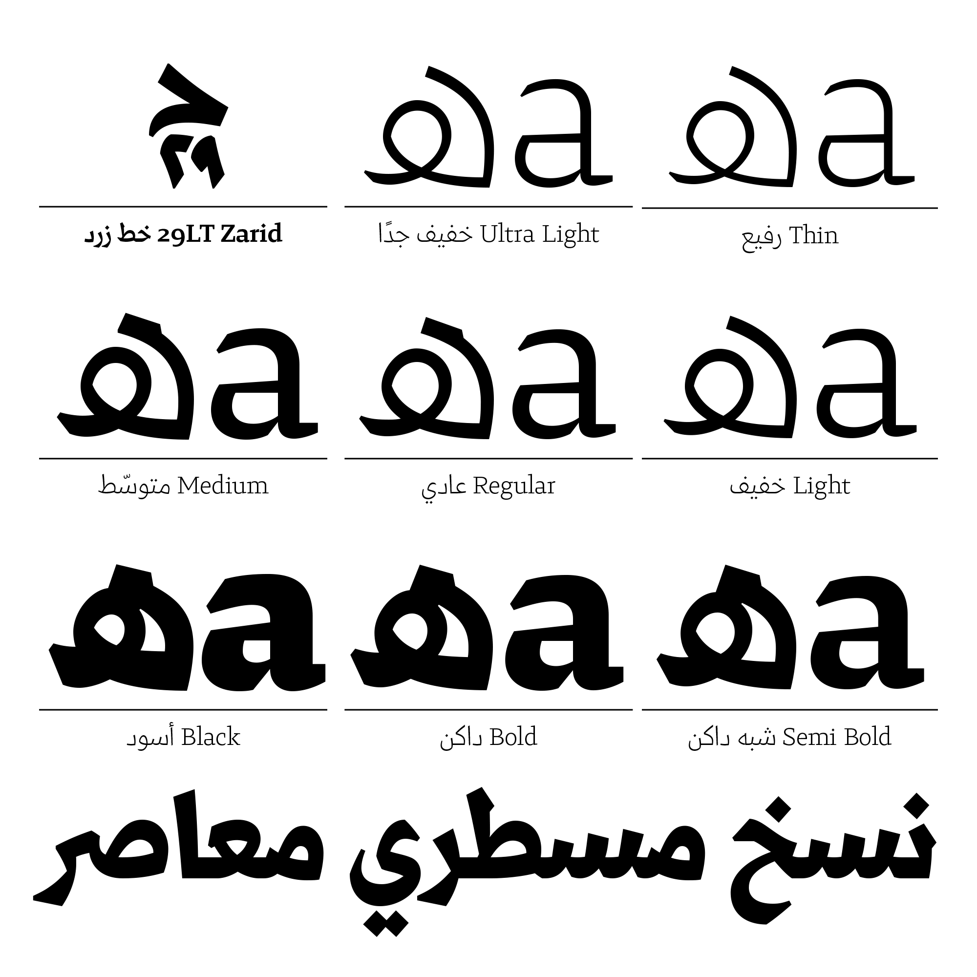 29lt Zarid Typographica