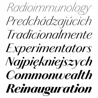 Chiswick Sans (Italics)