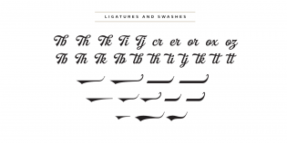 Buinton ligatures and swashes