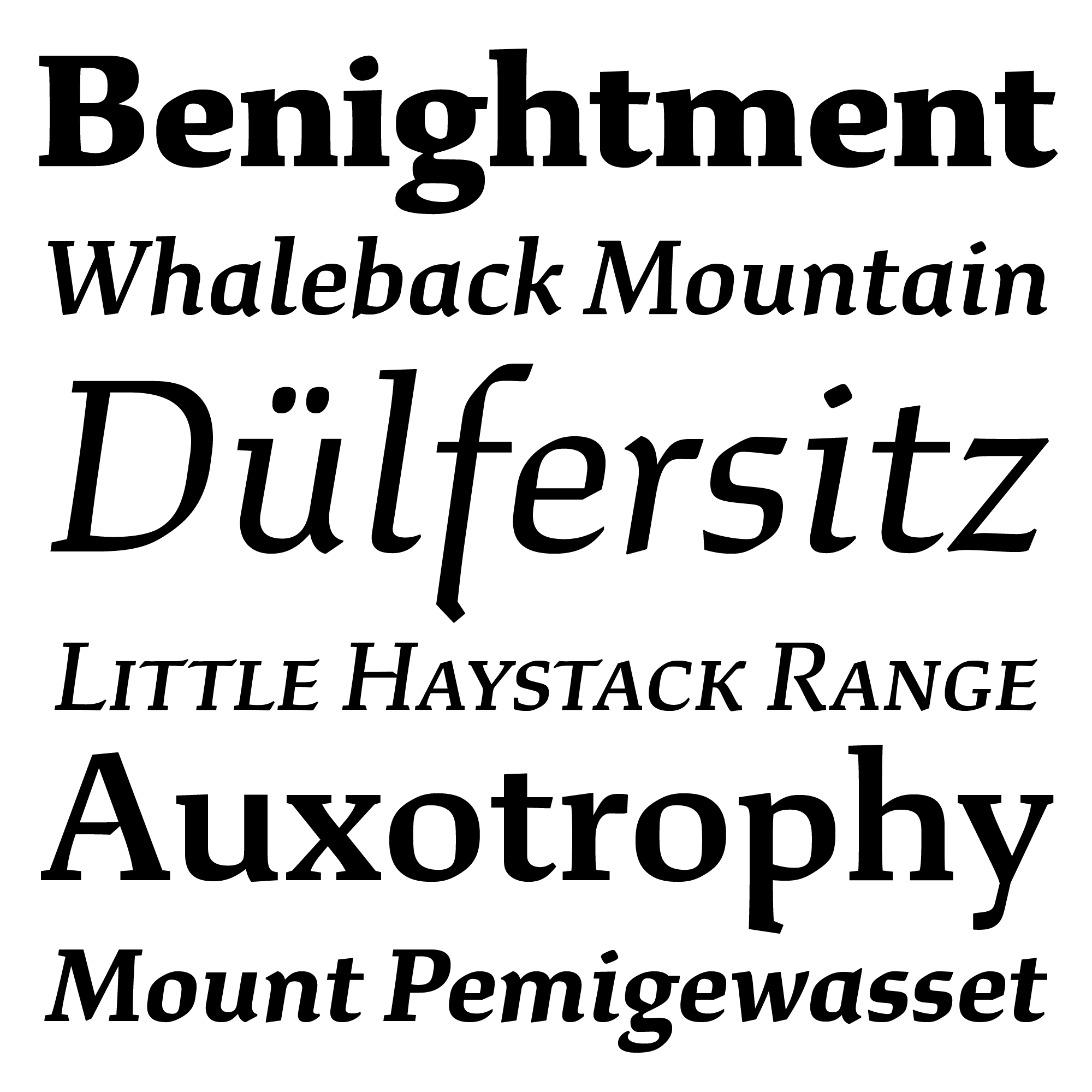 Study fonts specimen