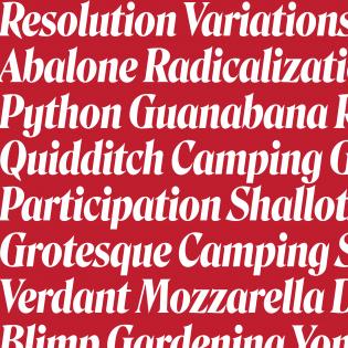 Roslindale Variable Italic