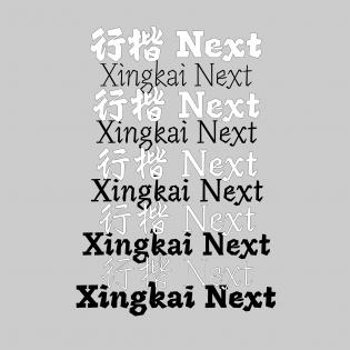 XingKai Next